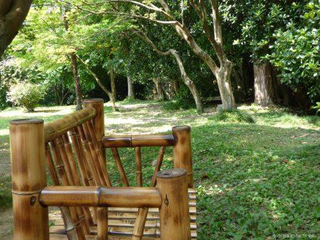 Бамбуковая лавочка в ботаническом саду города Батуми