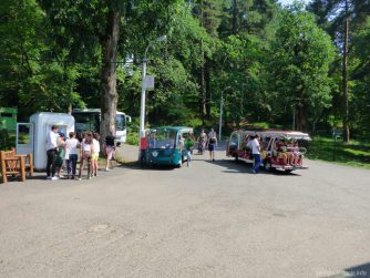 Экскурсионные автобусы в ботсаду Батуми