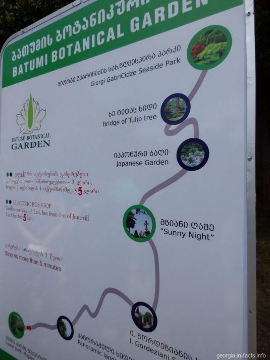 Главный маршрут следования электроавтобуса по ботаническому саду Батуми
