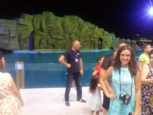 Конец шоу дельфинов в Батуми
