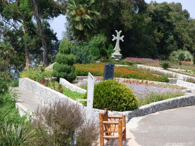 Красоты ботанического сада