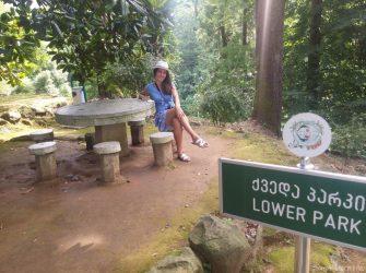 Лавочки и места для пикника в Ботаническом саду