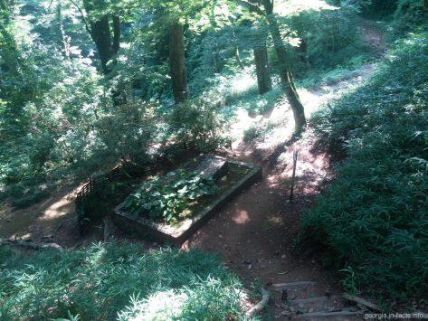 Могила Андрея Краснова на территории ботанического сада в Батуми