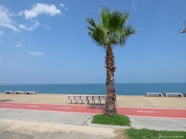 Набережная и море в Батуми