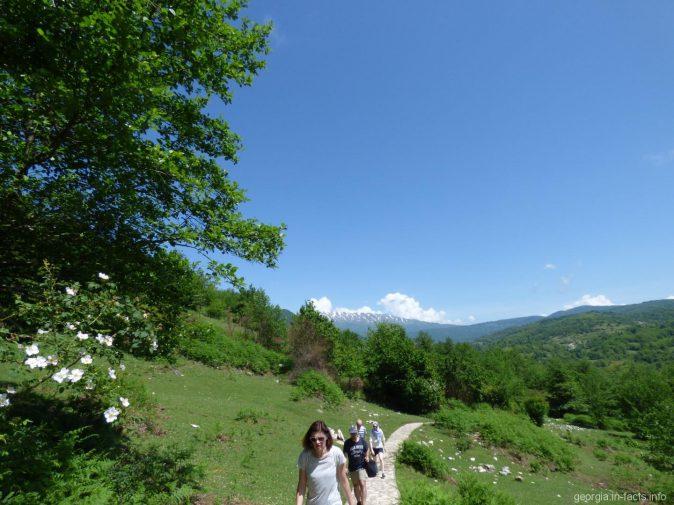 По дороге к каньону Окаце, Грузия