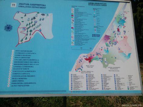 Стенд с информацией в ботаническом саду Батуми
