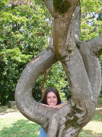 В ботаническом саду города Батуми