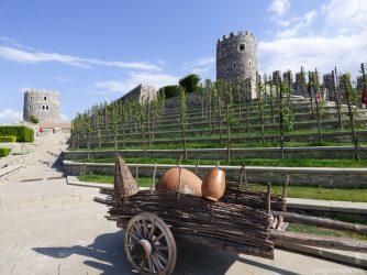 Виноградники в крепости Рабат в Ахалцихе