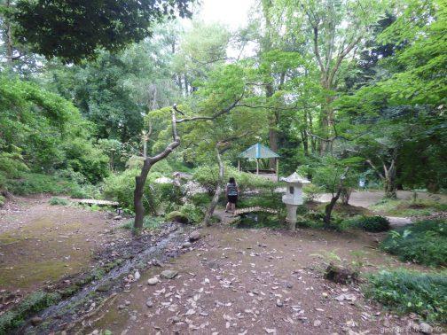 Японский зеркальный сад в ботаническом саду Батуми