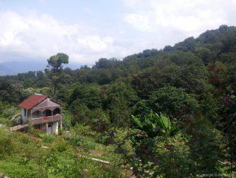 Жилой дом в ботаническом саду Батуми