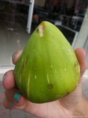 Зеленый инжир из Батуми