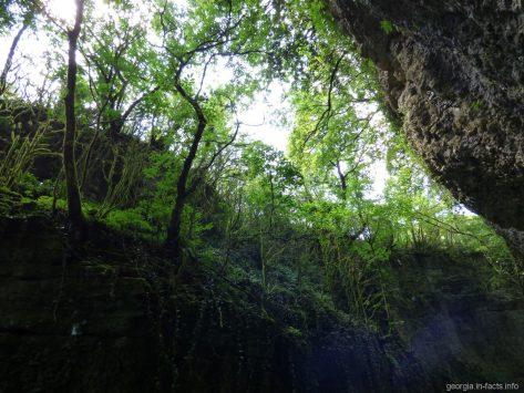 Зеленый мартвильский каньон