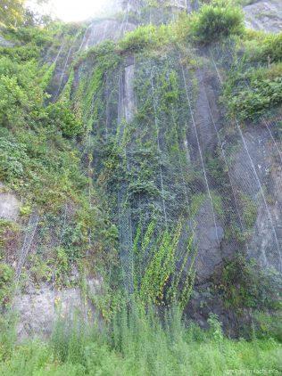 Сетка на скале в Сарпи, Грузия