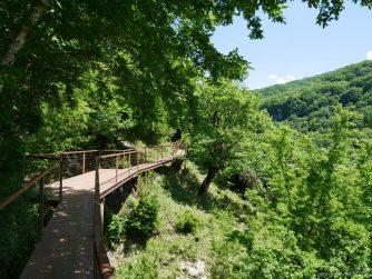 Вторая половина моста над Окаце, Грузия