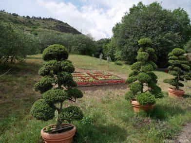 Ботанический сад города Тбилиси, Грузия