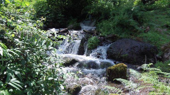 Бурная горная речка летом