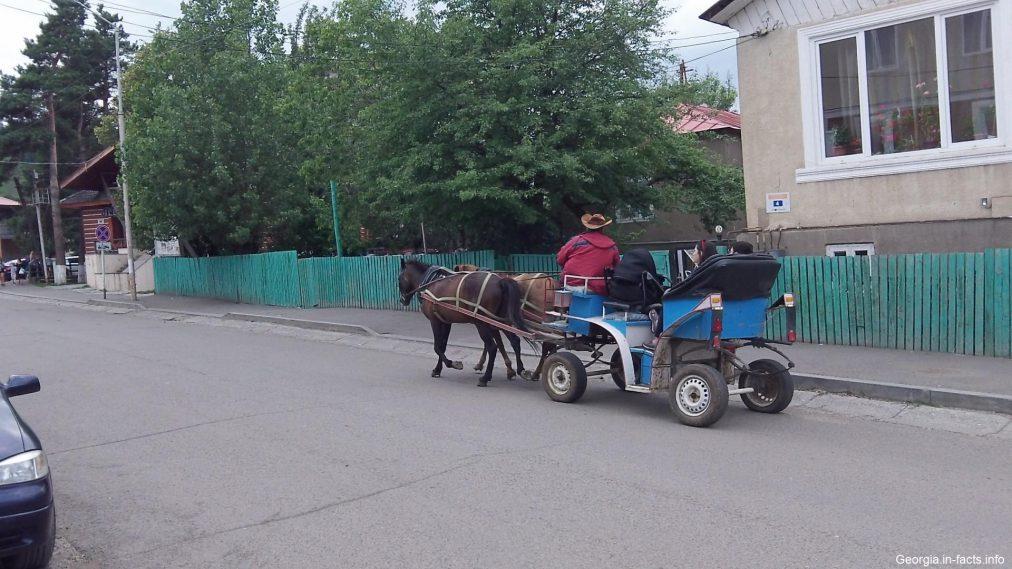 Катание на карете в Бакуриани