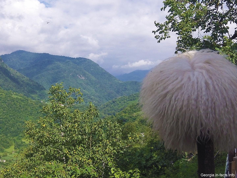 Достопримечательности Грузии: что посмотреть и куда поехать в Грузии