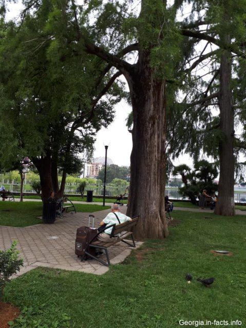 Отдых в парке Батуми
