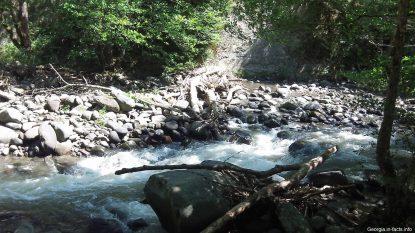 Природа в Боржоми