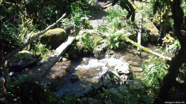 Тропинка к водопаду